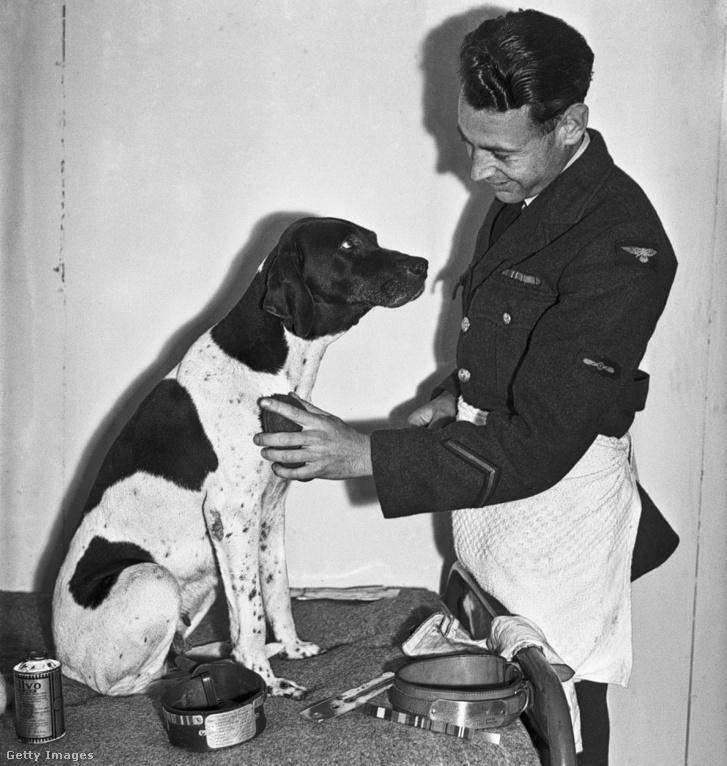 Frank Willams és Judy 1946-ban