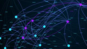 A hálózatok is kellenek a sikerhez, mondják a CEU-n