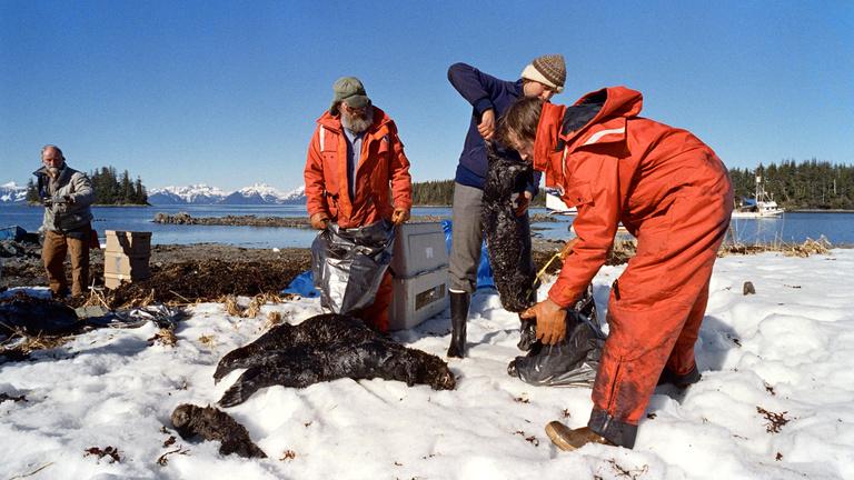 Az Exxon Valdez-katasztrófából talán sose épül fel végleg Alaszka
