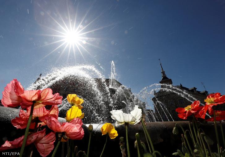Tavaszi virágok nyílnak az észak-spanyolországi Bilbaóban 2019. március 20-án