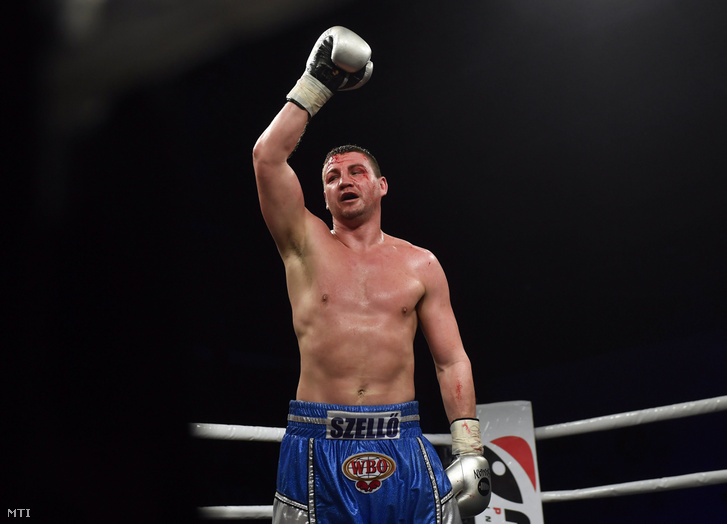 Magyar bokszoló vezeti a ranglistát az egyik profi világszervezetnél