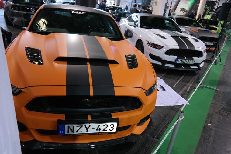 A Mustang-penetráció jelentős!