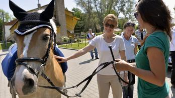 Harrach szerint nem gond, hogy a lovasközpont állami földeket kap