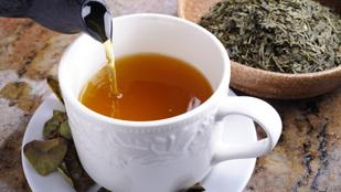 Csodát tesz az emésztéseddel a zöld tea