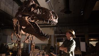 Megvan a T. rexek bajnoka