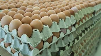 Jön a húsvét, de előtte még drágul a tojás