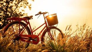 Biciklis utak kezdőknek
