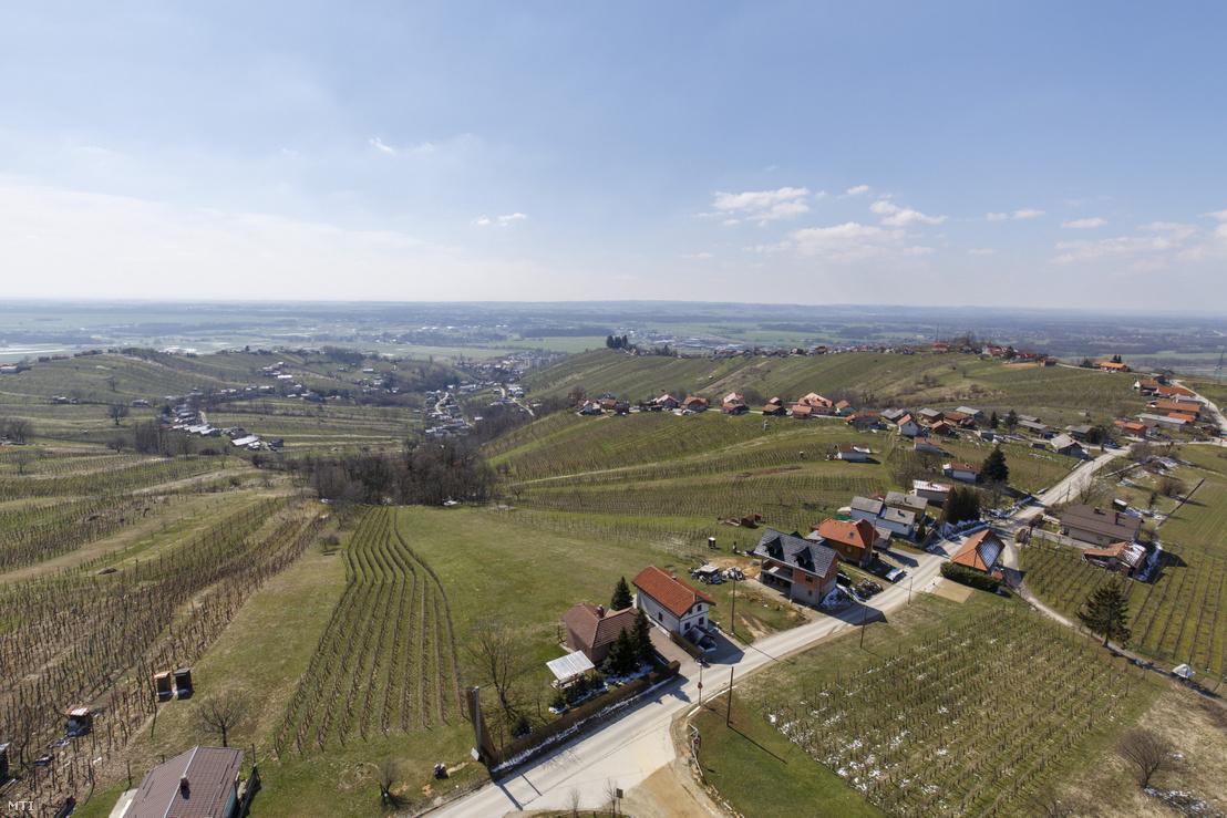 Kilátás a Vinarium-toronyból Szlovéniában, a Lendvához tartozó Hosszúfaluhegyen