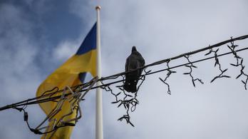 Sorozatsztár csaphat oda az ukrán elitnek