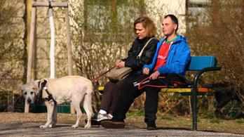 Miért költözik egy magyar vak pár Bécsbe?