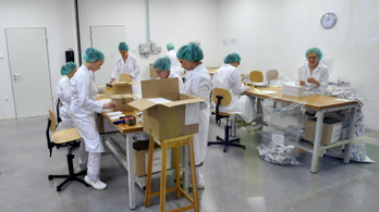 Sztrájkbizottság alakult a Sanofi gyógyszergyárában és raktártelepein
