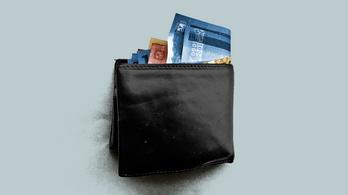 Mennyit lehet keresni adótanácsadással? És kártevőirtással?