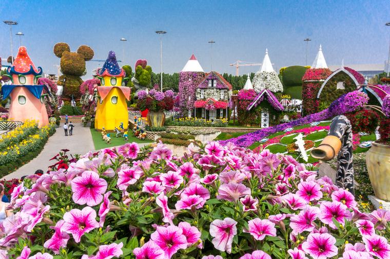 A Miracle Gardent, Dubaj 72 000 négyzetméteres kertjét 50 millió virága és 250 millió egyéb növénye emelte a világ legei közé