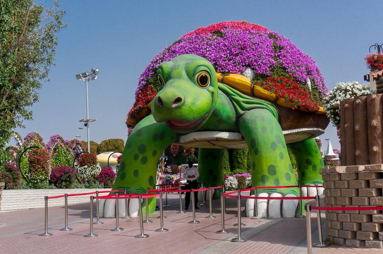A kertbe 12 éven felüliek 50 dirhamért (vagyis 4000 forintért), a 12 éven aluliak pedig 40 dirhamért (azaz 3200 forintért) léphetnek be, ahová egy óriás virágpáncélú teknős alatt nyílik a bejárat