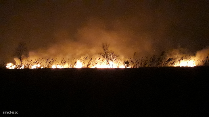 Péntek hajnalban is égett a fonyódi nádas. A tüzet a tűzoltók bekerítették.