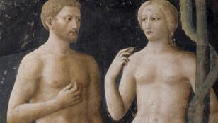 Milyen nyelven beszélt Ádám és Éva?