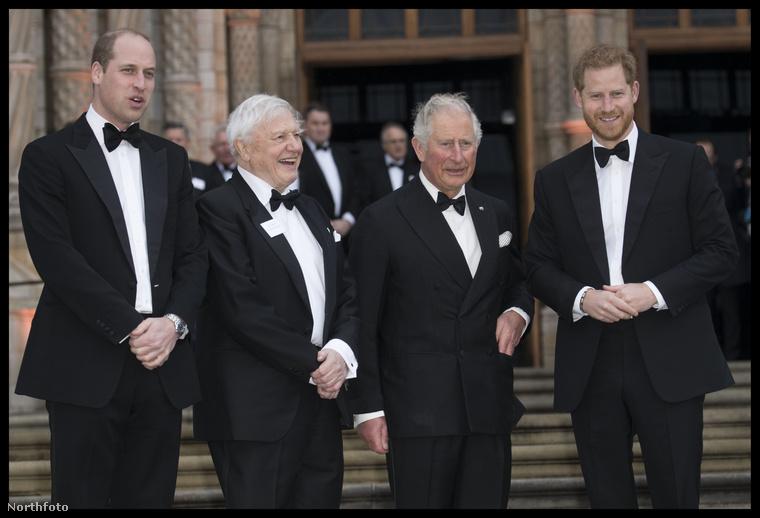 Az eseményt csütörtök este tartották Londonban, és van pár elég vicces partizós fénykép is a királyi megjelentekről, de előbb nézzük, hogy ki vett még részt az eseményen!