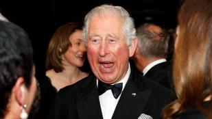 Károly herceget mindkét fia elkísérte erre a filmpremierre