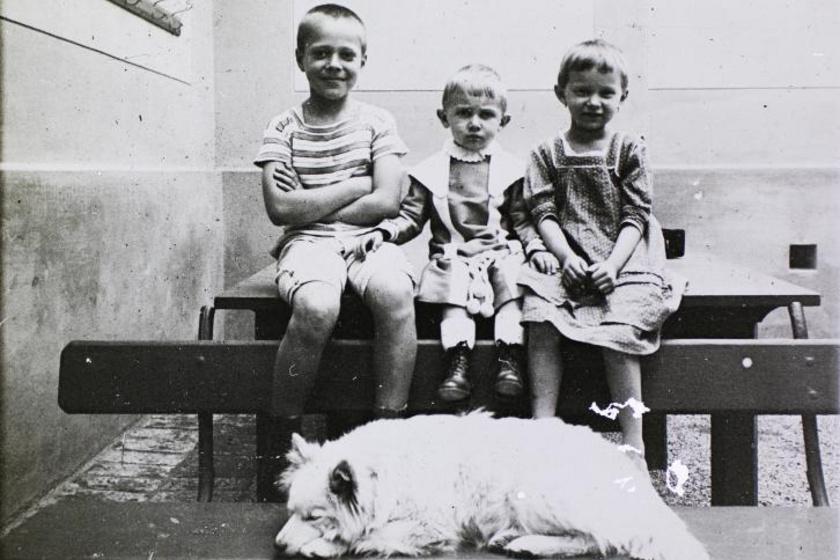 1905-ös felvételen sorakoznak a padon ülő gyerekek négylábú barátjuk álmát őrizve.