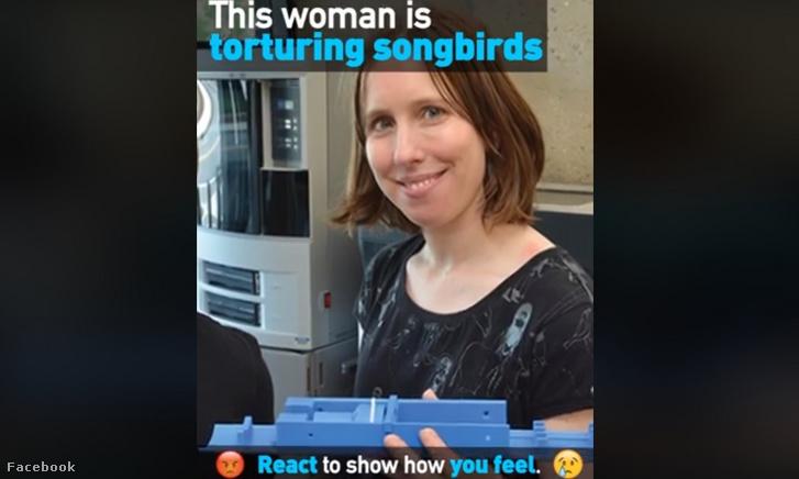 A Christine Lattint lejárató PETA-videó