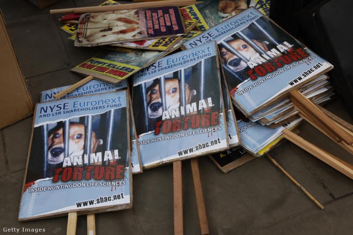 Tüntetés az állatkísérletek ellen Angliában 2009-ben.