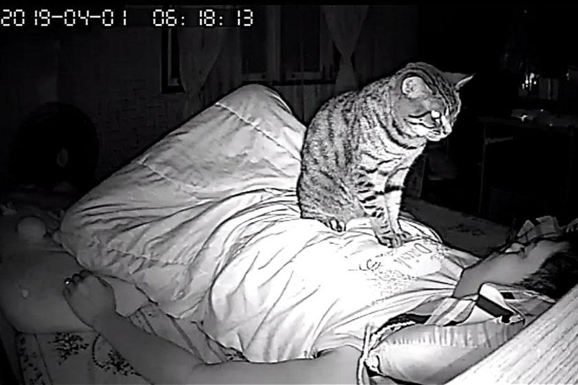 - Reggel 6 óra múlt. Nem gondolod, hogy ideje felkelni?
