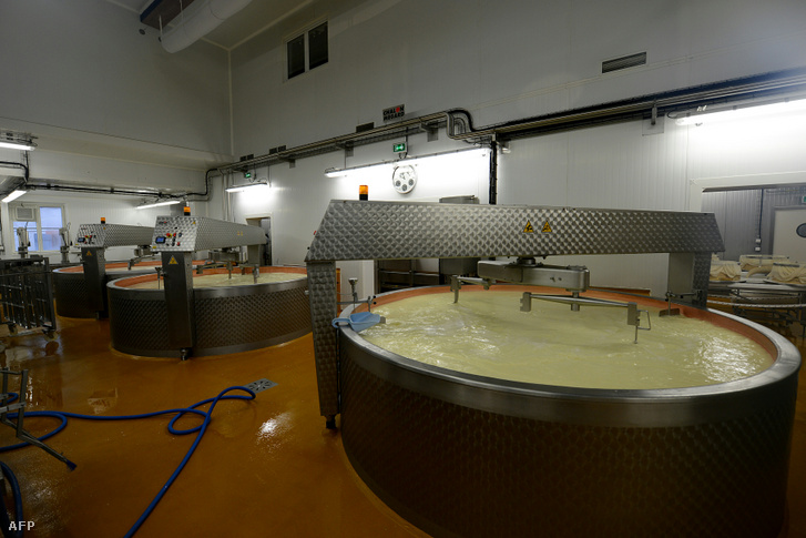 Beaufort sajtot készítenek a franciaországi Moûtiersben