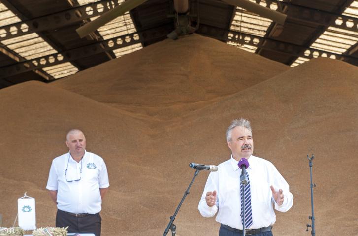 Nagy István, ekkor még a Földművelésügyi Minisztérium parlamenti államtitkáraként értékeli az 2017-es aratási szezont, amikor az átlagosnál több étkezési őszi búza termett (2017. augusztus 9., Chernelházadamonya).