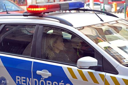 udvaros poliszkár