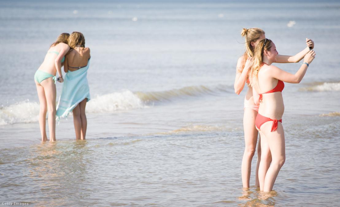 Tinik a tengerparton Hollandiában