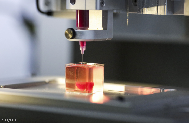 Emberi szövetek felhasználásával miniatűr háromdimenziós szivet nyomtatnak a Tel-avivi Egyetemen 2019. április 15-én. Az egyetem tudósai szerint ez az első, háromdimenziós nyomtatóval készített, emberi szöveteket tartalmazó szív a világon.