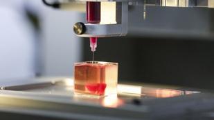 Sejtekkel és véredényekkel is rendelkező szívet nyomtattak izraeli tudósok