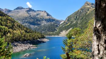 A Pireneusokban is kimutatható a mikroműanyag