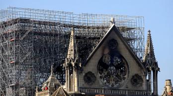 1300 normandiai tölgyet ajánlottak fel a Notre-Dame helyreállításához
