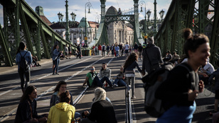 A gyalogosoké lesz a Szabadság híd a júliusi hétvégéken