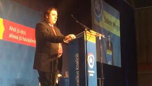 Volt DK-s politikust függesztett fel az angol liberális párt