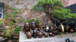 Látogatóban a koreai művészséfnél