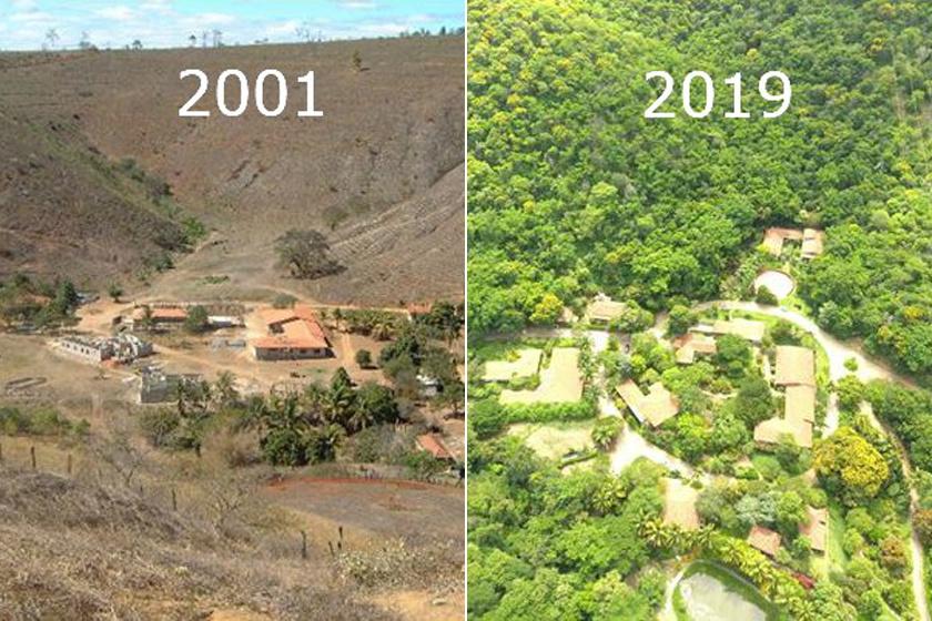Sebastiano Salgado és felesége egy erdőmérnökkel és pár munkással fogtak bele a lehetetlennek tűnő feladatba. Kiszámolták, mely fajokból mennyi és hova kell, kapcsolataikat pedig bevetették, hogy pénzhez és alapanyagokhoz jussanak. 18 év alatt közel 3 milliót fát ültettek.