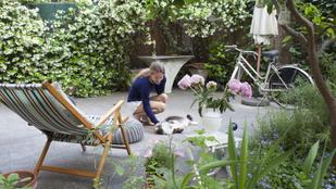 Teremtsd meg a nyugalom oázisát a kertedben 4 lépésben