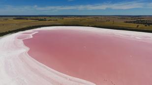 Így lesznek rózsaszínűek ezek a gyönyörű tavak