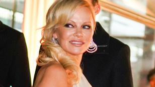 Pamela Anderson szerint a leégett Notre-Dame már elég pénzt kapott
