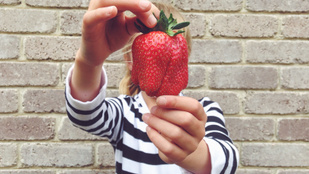 Így tarthatod sokáig frissen az epret: megvan a legjobb módszer!