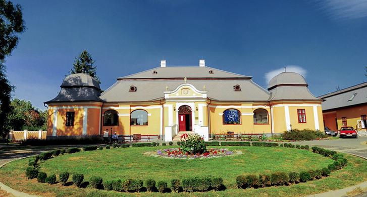 Vásárosnamény, Tomcsányi-kastély