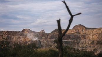 Tudósok és őslakosok sürgetik az EU fellépését a brazil erdőirtások ellen