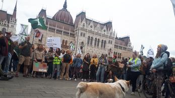 A kihalás elleni lázadás elérte a Kossuth teret