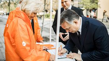 Leszavazták a fideszesek az óvodai aláírásgyűjtés kivizsgálását