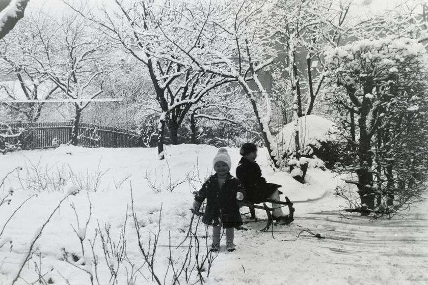 Ha leesett a hó, a szánkó végre előkerült. (1934)