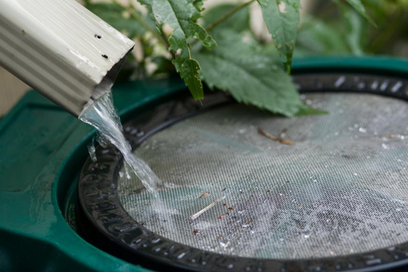 Csökkenti a rezsit, ha ilyen tartályt állítasz a kertbe: mutatjuk, mi mindenre használható az esővíz