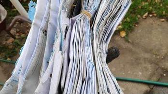 Hivatalos levelekre bukkantak szemétszedés közben