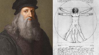 Kiállítják Leonardo da Vinci haját